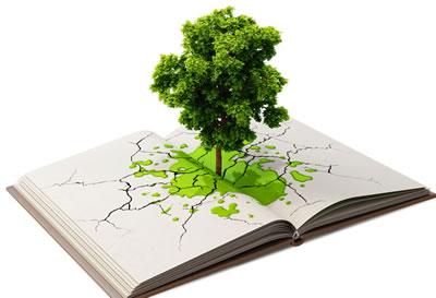cursos_sfera_medioambiente