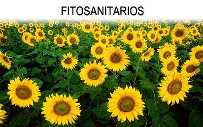 FITOSANITARIOS 2
