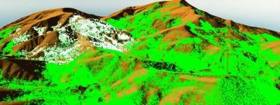 vegentacion 3D 3